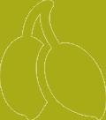 Monovarietal Picudo, intenso frutado de aceituna verde, destacan los aromas a citricos como limón o pomelo verde