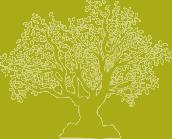 LOS OLIVOS Ejemplares únicos y vetustos que conservamos con veneración y respeto, siguiendo así, el ejemplo de nuestros mayores que los mantuvieron y cuidaron. Casi todos ellos son PICUDOS, es decir, la variedad que tiene el ápice del fruto con un pico o pezón característico.